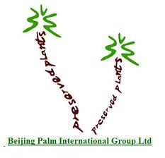 Beijing Palm International Group