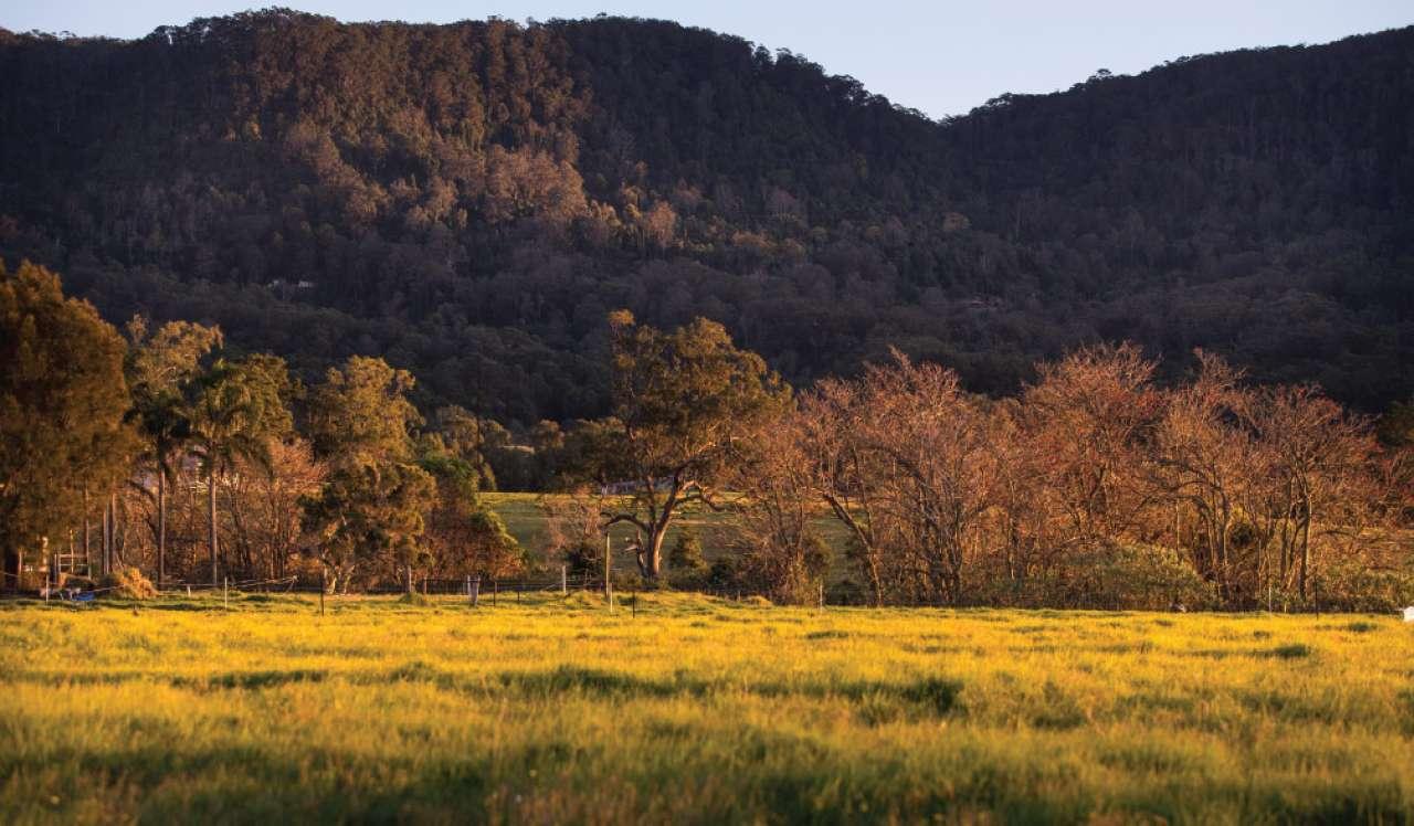 Sanctuary Ponds Estate Wongawilli