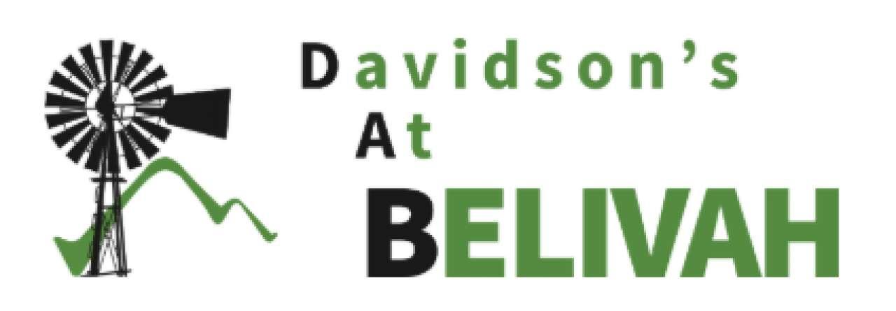 Davidsons Estate Belivah