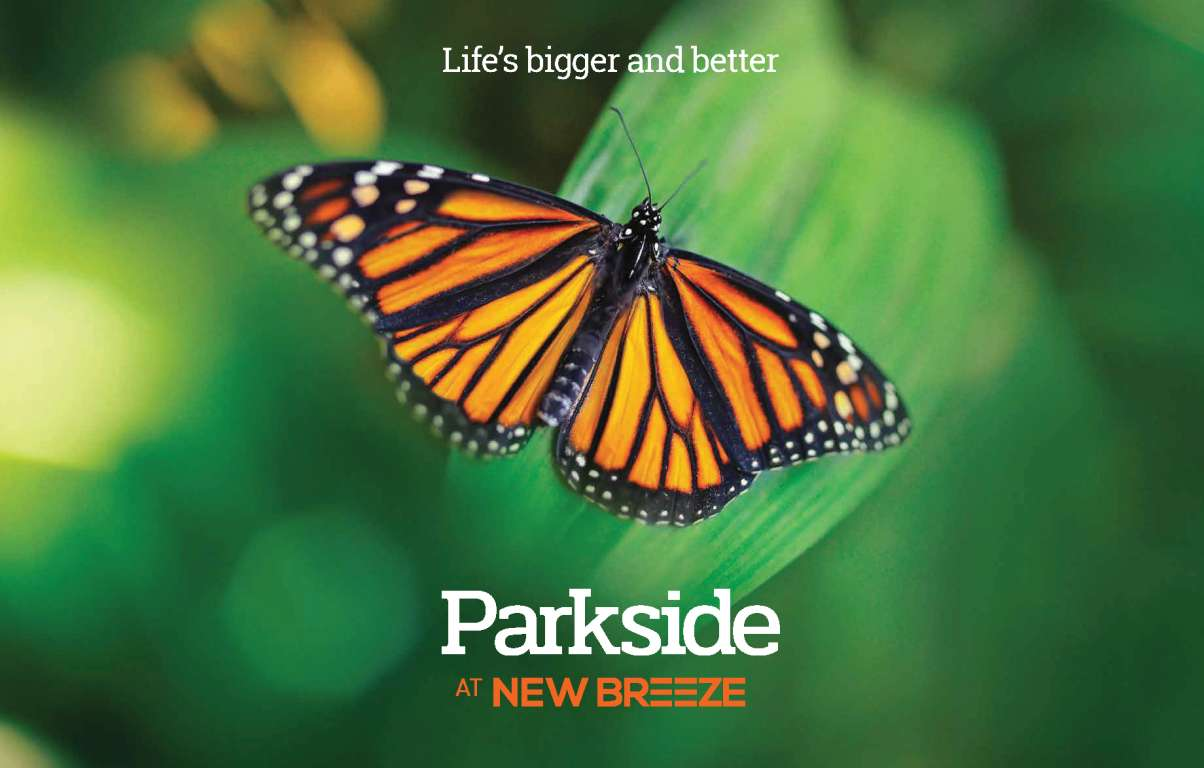 Parkside At New Breeze Project Bardia
