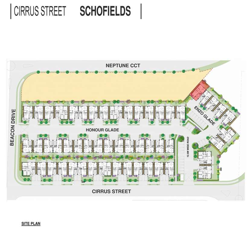 Cirrus Street Project Schofields